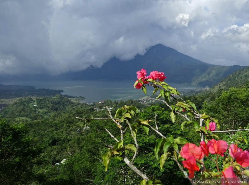Гигантская кальдера, возникшая ещё много тысяч лет назад в результате мощного извержения, частично заполнена озером Батур (Danau Batur), -  это крупнейшее кратерное озеро на Бали размерами 7,5 х2,5 км.