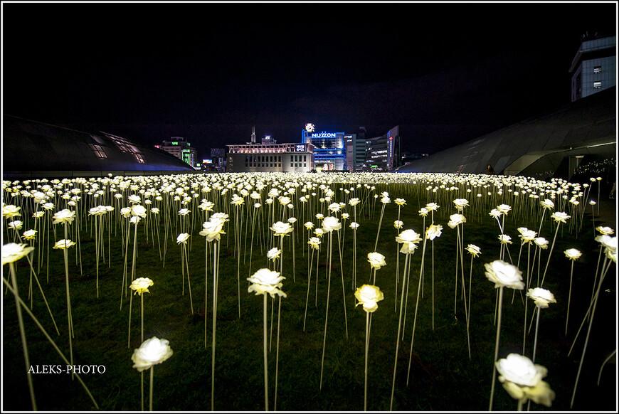Мертвые днем искусственные цветы вечером как будто оживают и наполняются электрической жизнью. Так и хочется представить, как некие роботы 22 века ходят и нюхают здесь искусственные ароматы. Хотя нет - пусть уж лучше мир остается живым и цветы - тоже...