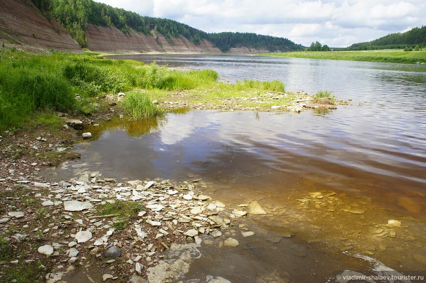 Правый берег Сухоны. Вода в реке и её притоках прозрачная, но имеет коричневый оттенок, так как многие реки протекают по заболоченным местам
