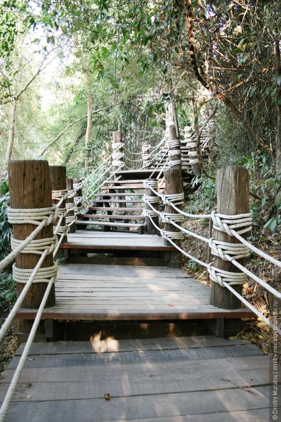 Приятно в зелени пройти по ступенькам