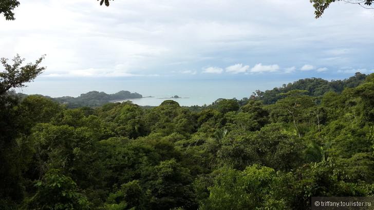 На какой период лучше ехать в Коста Рику?