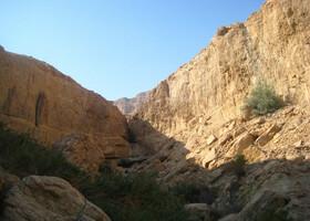 Эйн Геди - оазис Иудейской пустыни