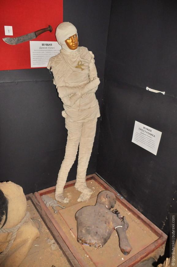 11. Это более классическая мумия. А вот внизу лежит мумия преступника из Древнего Египта.