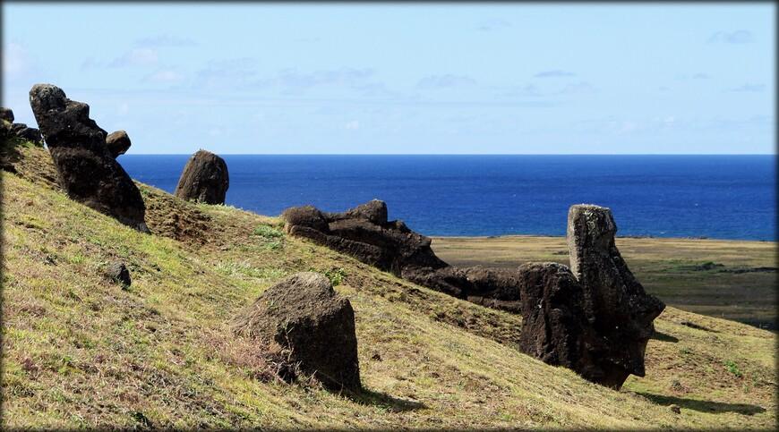 Здесь мне понравилось то, что в отличие от других площадок острова, моаи стоят не на постаментах в ряд, а разбросаны по всей округе.