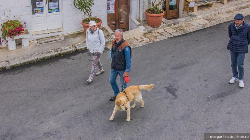 по Италии многие путешествуют со своими питомцами