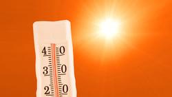 Европа страдает от аномальной жары