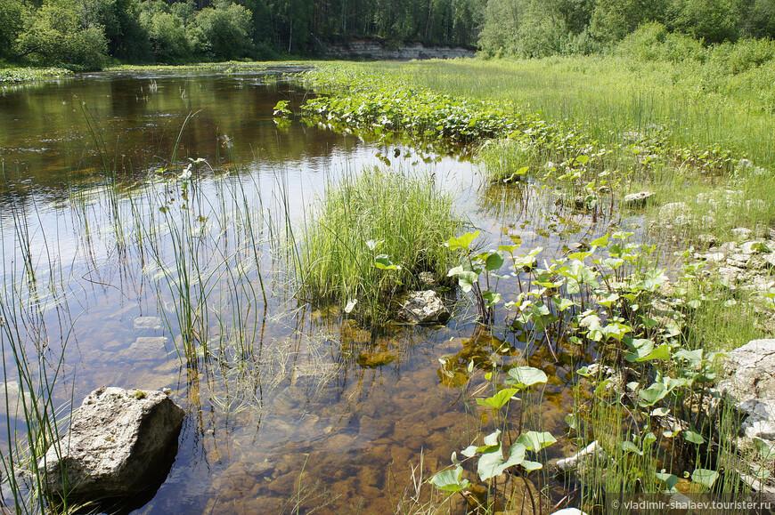 Река Стрельна.