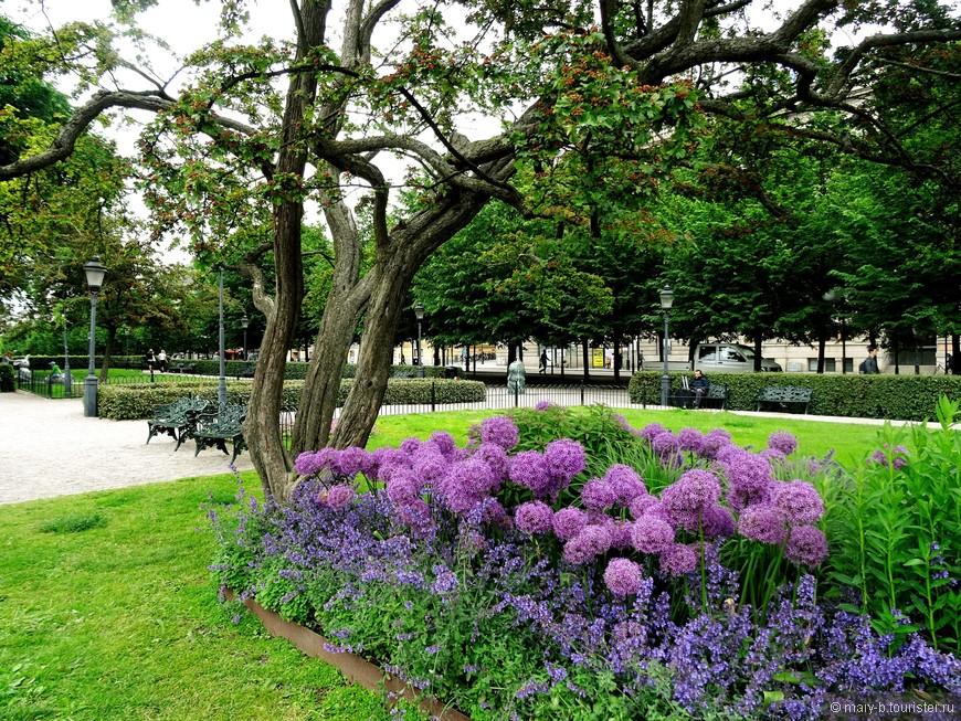 Красивый сад рядом с площадью Карла XII