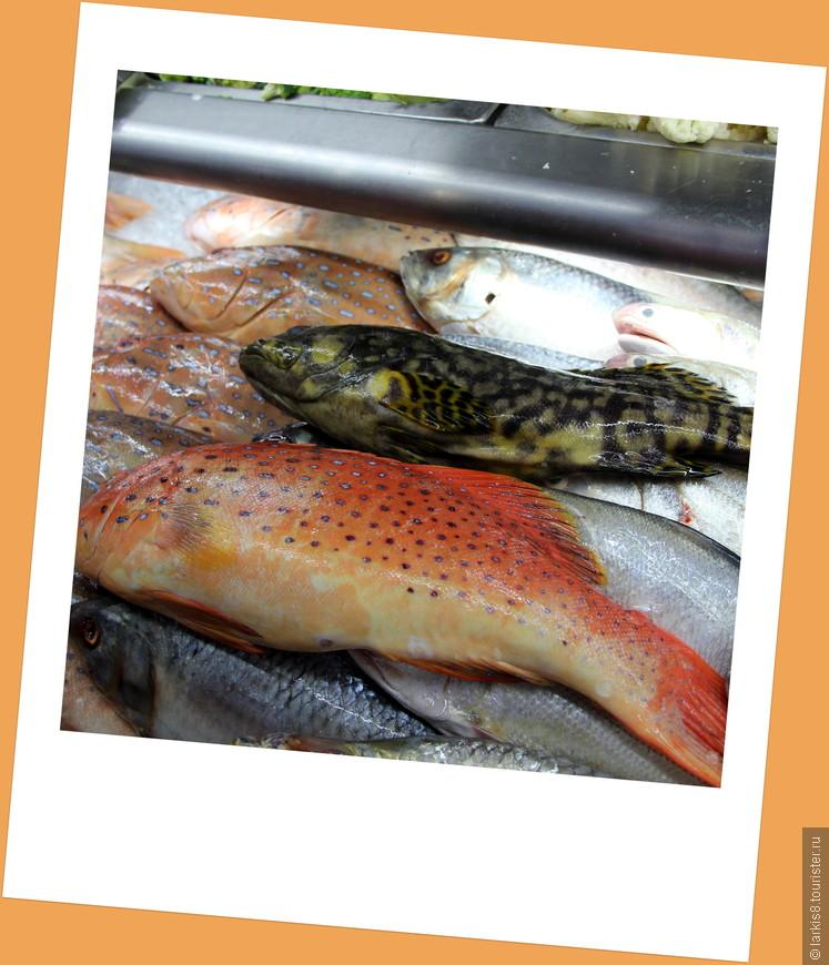 Этих рыбин мы решили съесть!