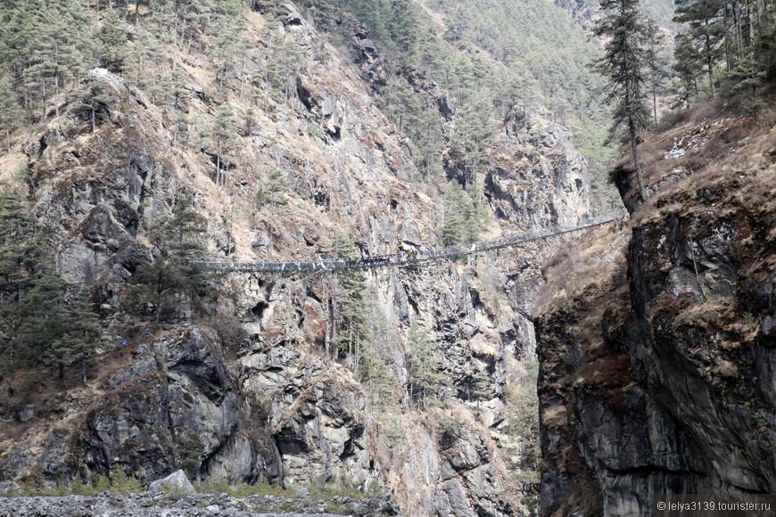Трек к ЕВС. Подвесной мостик