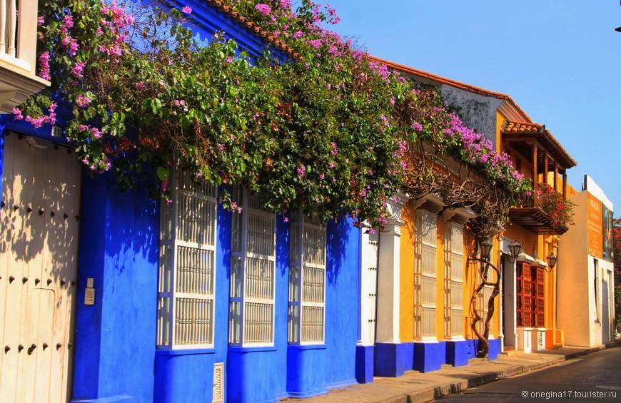 Картахена цветет и благоухает на радость всем, кто прилетит ею полюбоваться.