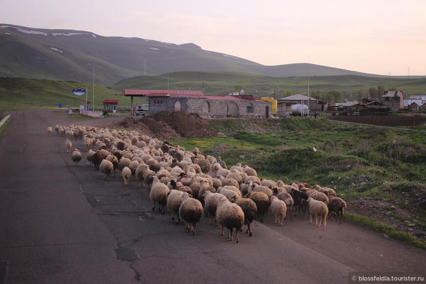 Трасса до Гориса