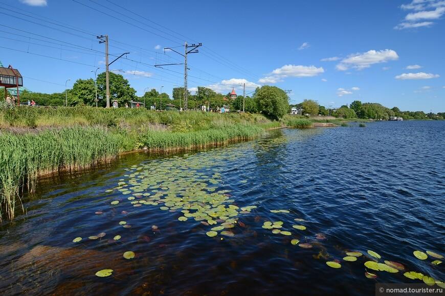 Река Лиелупе