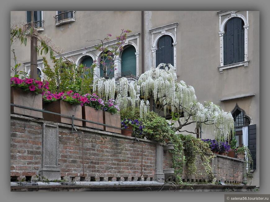 Весенняя Венеция  очаровательна.