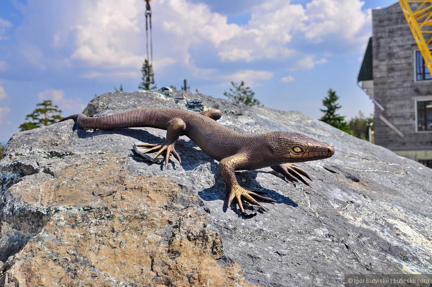 33. На камнях можно легко обнаружить вот такую южноуральскую ящерицу.