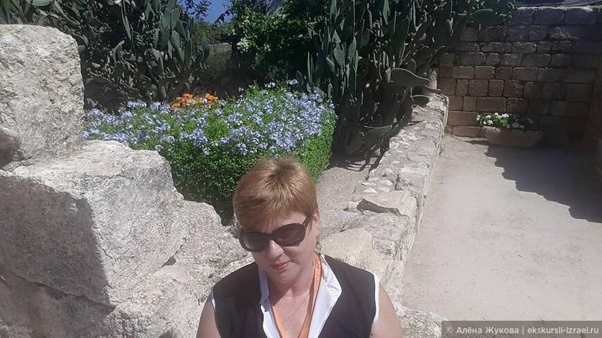 Цветочки в развалинах крестоностской крепости на горе Фавор - горе Преображения Христова.