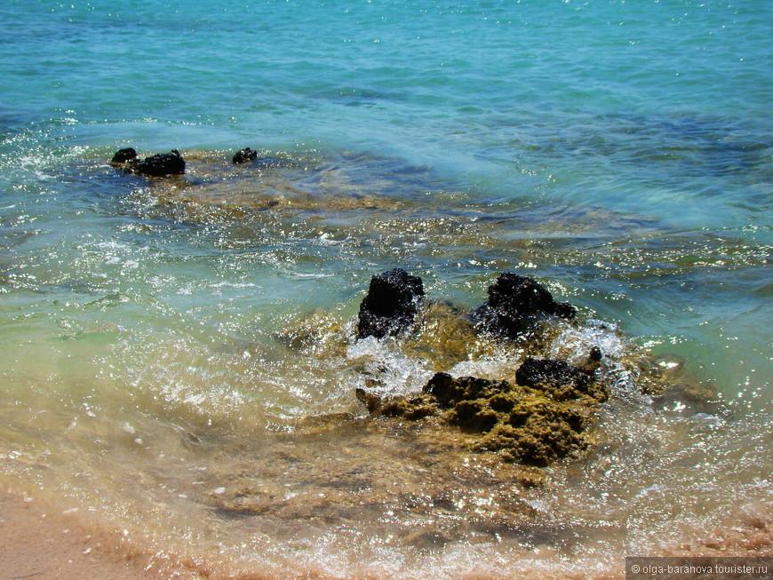 Элафониси – это одно из немногих мест на Крите, где можно купаться даже во время шторма, так как из-за небольшой глубины здесь практически никогда не бывает волн.  Самой главной особенностью пляжа является его розовый песок, который может менять более 100 оттенков в зависимости от того, в какой части пляжа находится. На сегодняшний день, существует несколько исторических версий того, которые объясняют окрас песка, но в действительности же, он получается из-за измельченных кораллов и ракушек, которые отшлифованы морем. Вода же здесь кристально чистая с аквамариновым цветом, и напоминает об экзотике.  Пляж Элафониси – это прекрасное место для отдыха с детьми, особенно если говорить про безопасность. Здесь не глубоко, а спуск к воде – пологий. И не смотря на то, что здесь всегда многолюдно, тут нет ощущения толпы и суматохи. Меньше всего людей здесь в начале мая и октябре.