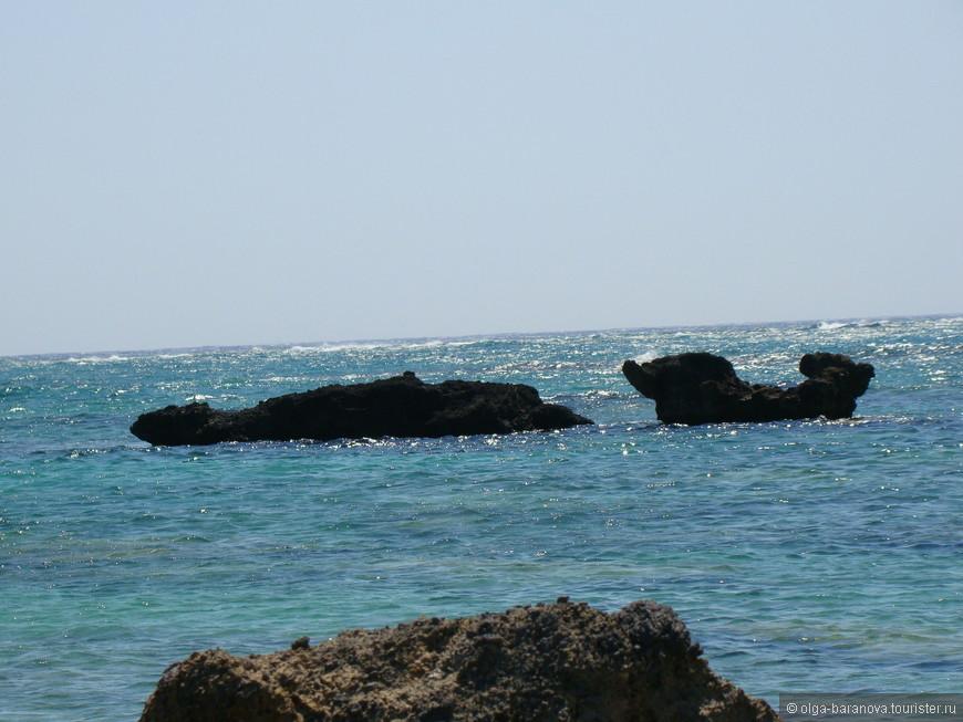 Крит 2012 1128.jpg