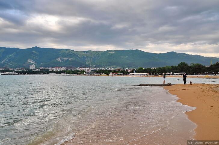 Смотреть реальный видео с дикова пляжа онлайн бесплатно фото 751-183