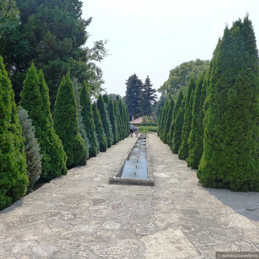 Датой основания сада называют 1921 год. Сегодня это дом для 3 тысяч видов растений. Среди них выделяется 250 кактусов, каучуковые, а также экзотические «бумажное» и «сладкое» деревья.
