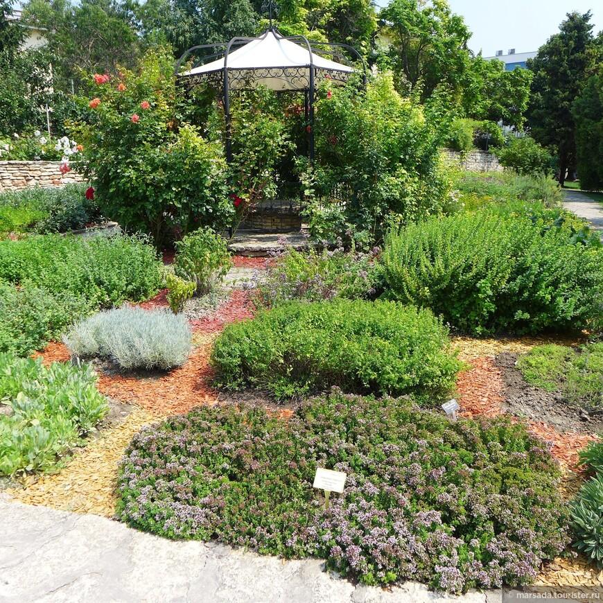 Вернее не совсем так - сначала там был не ботанический сад  а просто прак. А уже в 1955 году академик Баки Иорданов на основе парка королевы Марии сделал то, что мы имеем сейчас.