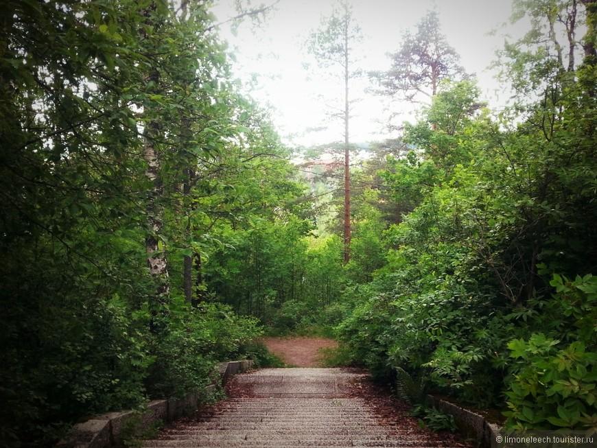 Может и бурчу по поводу подъема, но прогулка получилось хорошей. Давно не была в лесу. Сложно назвать этот парк просто парком. Кусочек леса в городе. То, что так не хватает в большом городе.