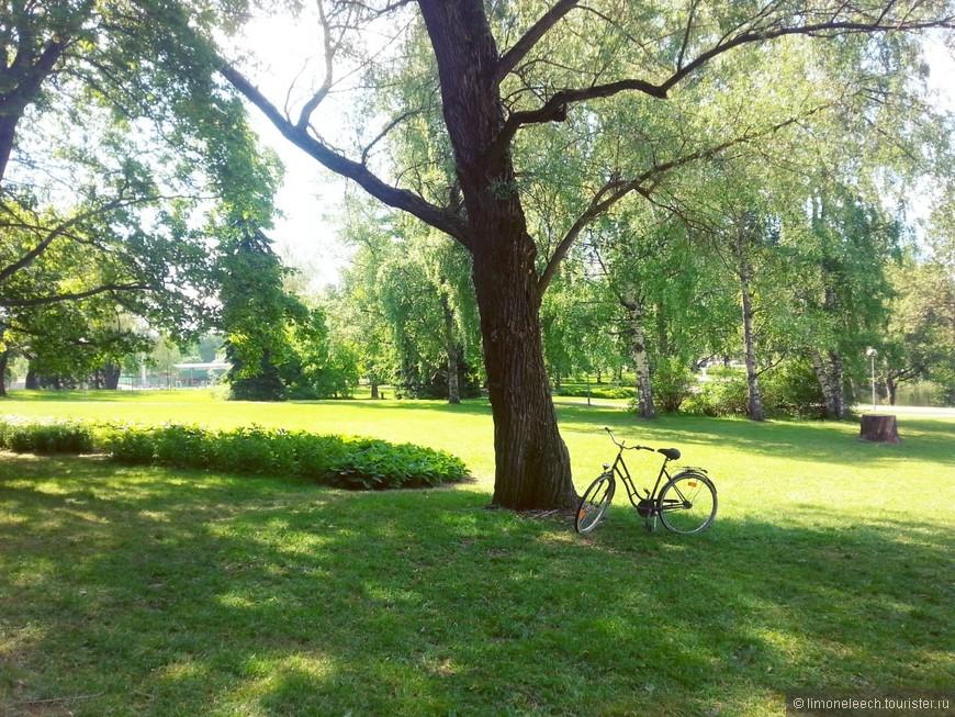 Велосипеды... они везде!