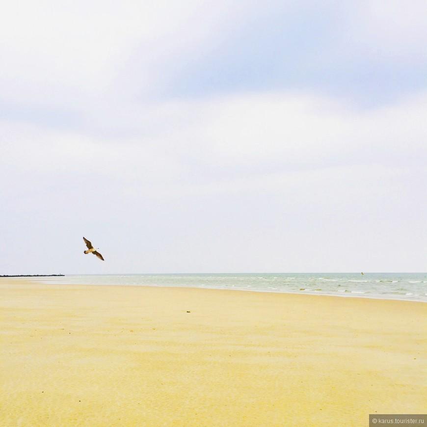 Остров Тексел