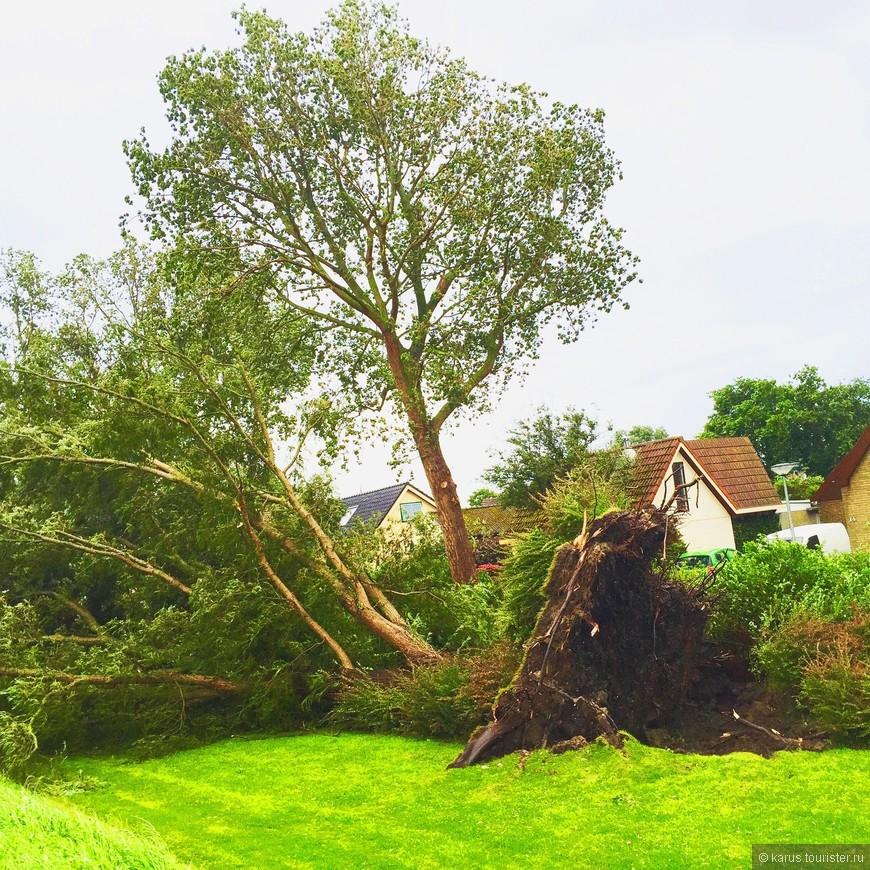 вот такой ураган был в Нидерландах 25 июля.