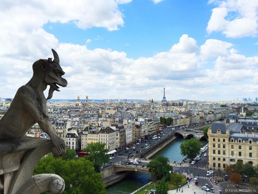 Гаргульи и Париж с высоты