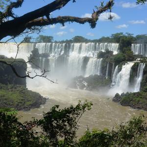 Дождевой лес и аргентинские водопады Игуасу
