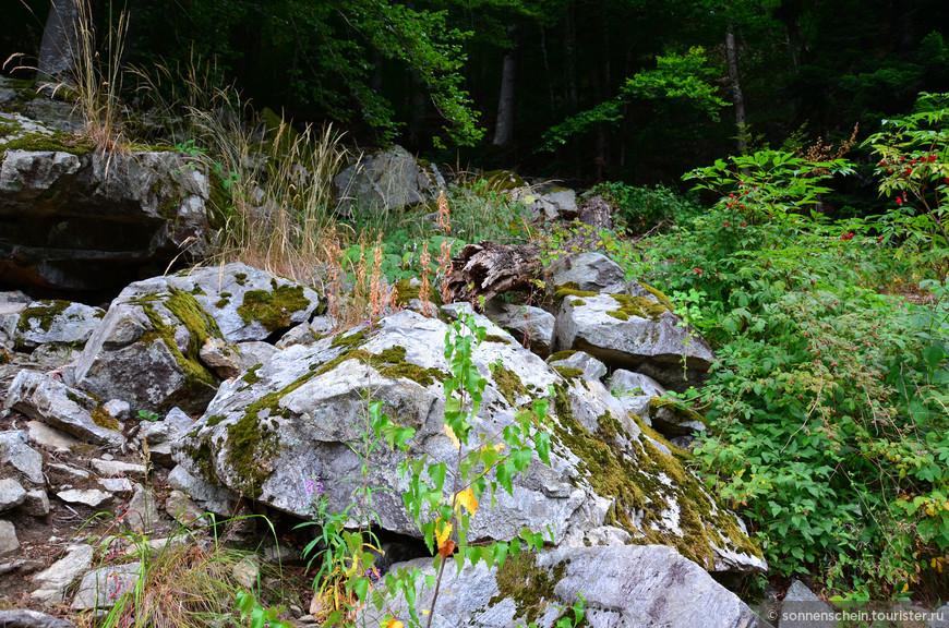 До 18 века в этом районе добывалась серебряная руда, поэтому местность изрешечена старыми туннелями.