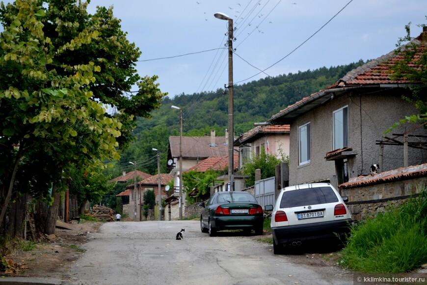 Болгарская деревня - хранитель духа и традиций народа, его старинных обычаев, пестрого фольклора и мудрости. Только в сельских регионах можно отведать традиционные блюда, приготовленные специфическим способом, послушать красивые народные мелодии, ознакомиться с местными легендами и сказками. Многие деревни в Болгарии в течение многих веков успешно сохраняют аутентичный облик, и позволяют гостям больше узнать об истории и обычаях народа. До сегодняшнего дня сохранилось множество интересных и древних обычаев.
