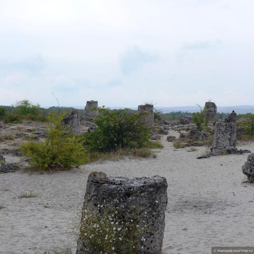 Гипотез и теорий, описывающих происхождение вбитых камней чрезвычайно много. Болгарские уфологии настаивают на существовании вокруг каменного леса уникальной  зоны с предельными показателями энергетики. Благодаря этому якобы столбы каменного леса могут вытягивать из человека отрицательную энергию, тем самым очищая ауру от любых негативов.