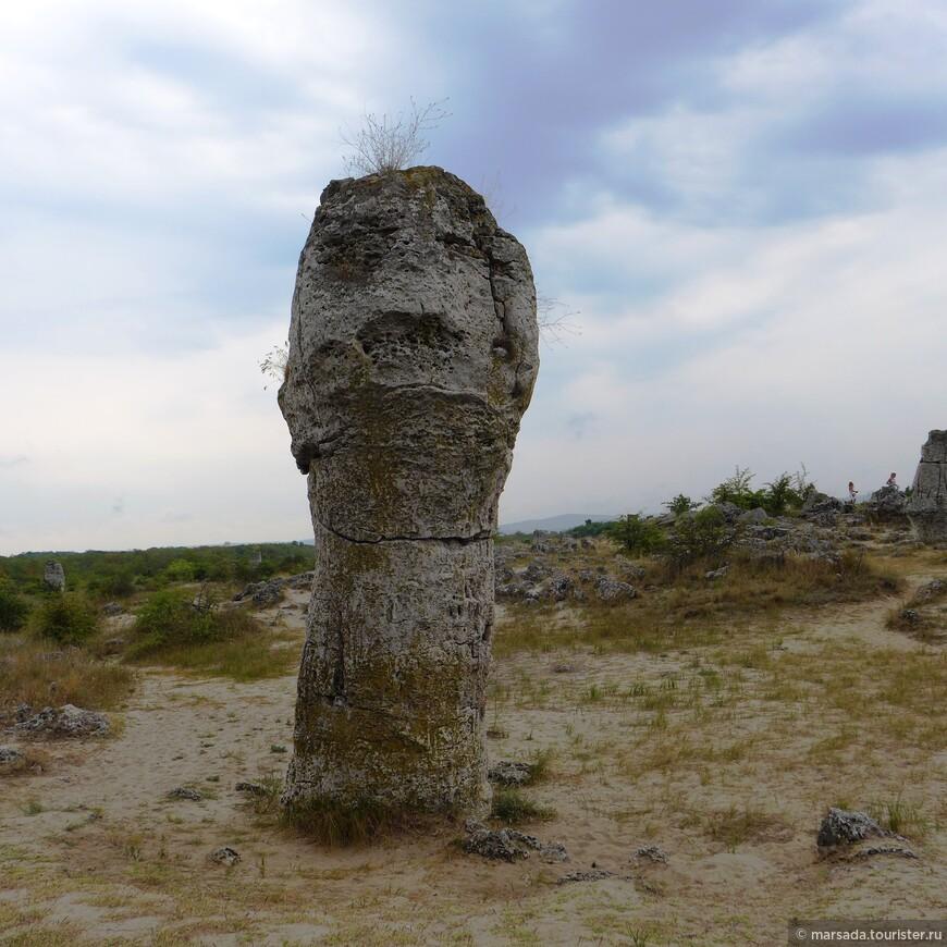 """Кстати, многие камни имеют свори названия - у кого на что фантазии хватит  - увидеть скульптурные творения - животных, людей, монстров, мифических существ. Этот камень, например, называется """"одиночество""""."""