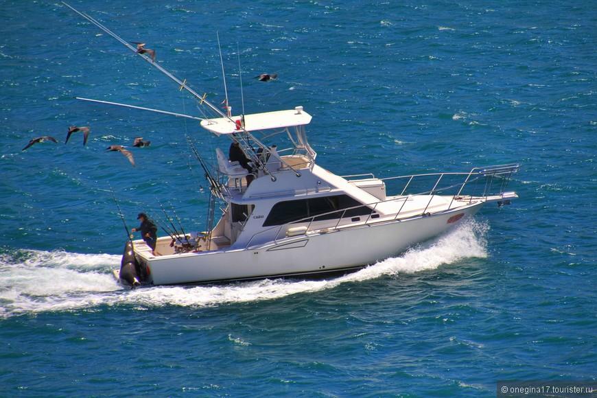 А хотите отправиться на рыбалку? Вот только хорошим уловом придется поделиться с аборигенами этих берегов. Впрочем, плохим уловом тоже придется делиться...