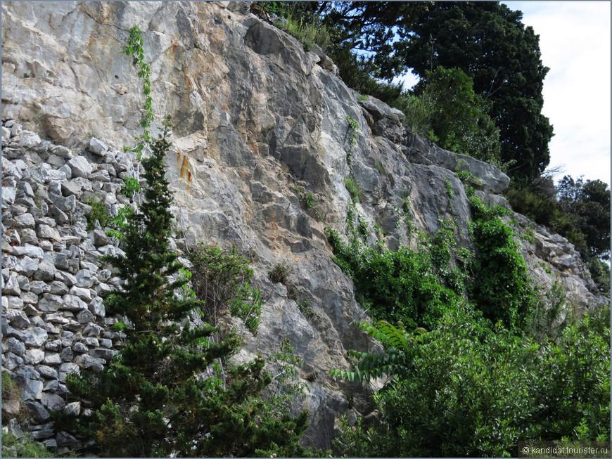 Построен замок на таких вот скалах. Не очень высоких, но позволяющих замку доминировать над  всем окружающем его побережьем.