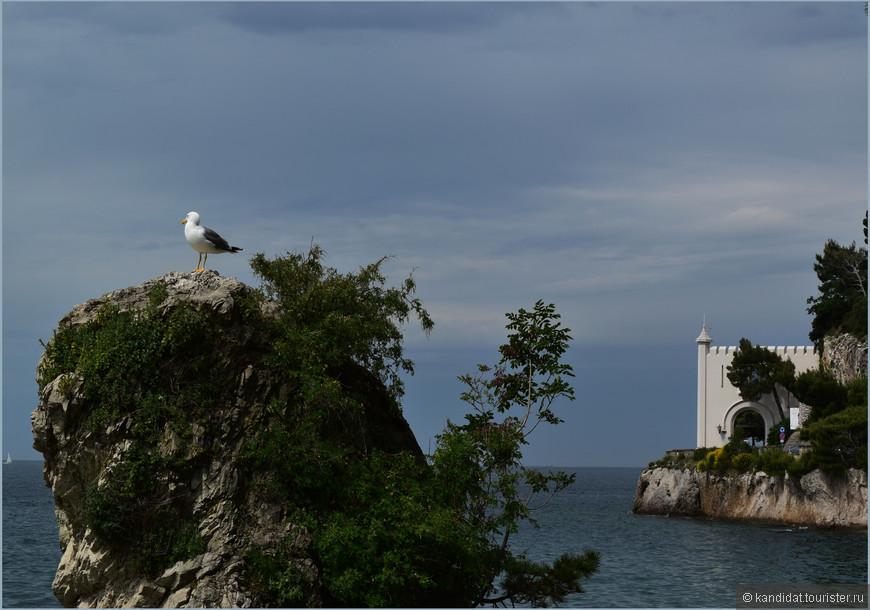 Очень гармонично вписывается замок в окружающий его скалисто-морской ландшафт.