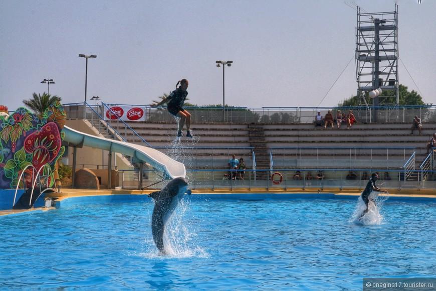А люди не отстают от дельфинов...