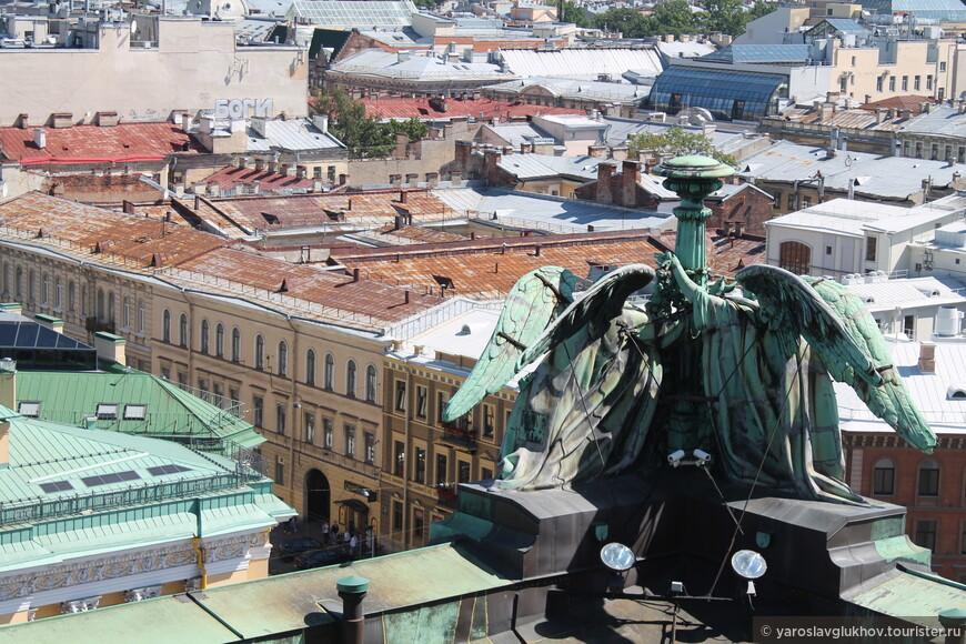 Крыши Северной столицы.