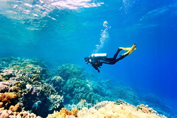Rixos Seagate Sharm — все наслаждения Египта