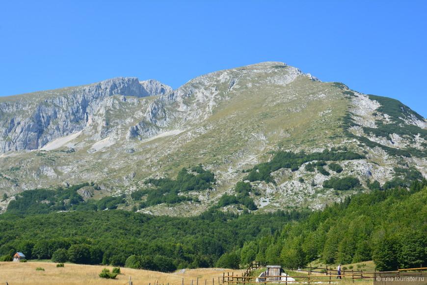 Дурмитор находится на высокогорном плато. Самая высокая гора в парке составляет 2522 м. На фото гора Савин Кук, на которую нам удалось забраться, мы прошли по маршруту 12 километров (включая дорогу до самой горы от города Жабляк). Самая высокая точка горы составляет 2313 м., чуть ниже влево (2287 м.) расположен Медвежий пик.   С вершины открывается потрясающий вид на Черное озеро, деревни и горные вершины, можно увидеть фантастически красивые пейзажи, похожие на пейзажи канадских озер.