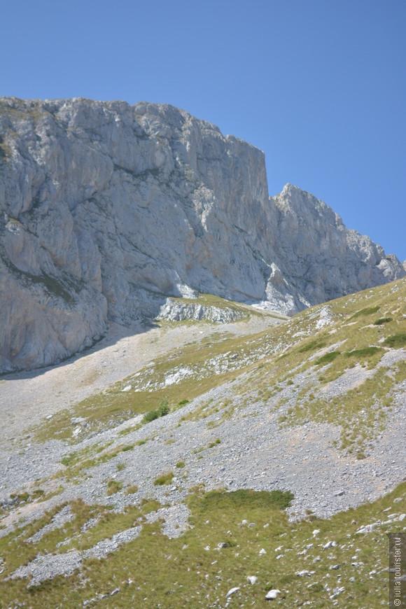 По дороге к вершине мы встретили диких горных коз, они очень пугливые и быстро бегают))