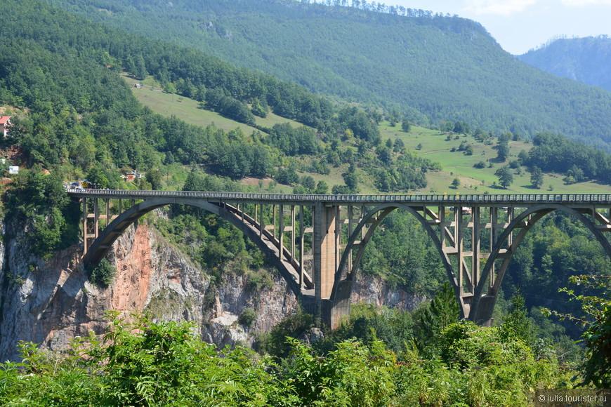 На территории парка находится каньон реки Тара. Через него на 135-метровой высоте ведет прекрасный мост длиной в 145 метров, открывающий невероятную, потрясающую картину.  Мост Джурджевича, прекрасный арочный мост имеет длину 365 метров. Высота проезжей части моста от реки Тара — 172 метра.  На момент завершения строительства это был самый большой автомобильный бетонный арочный мост в Европе.