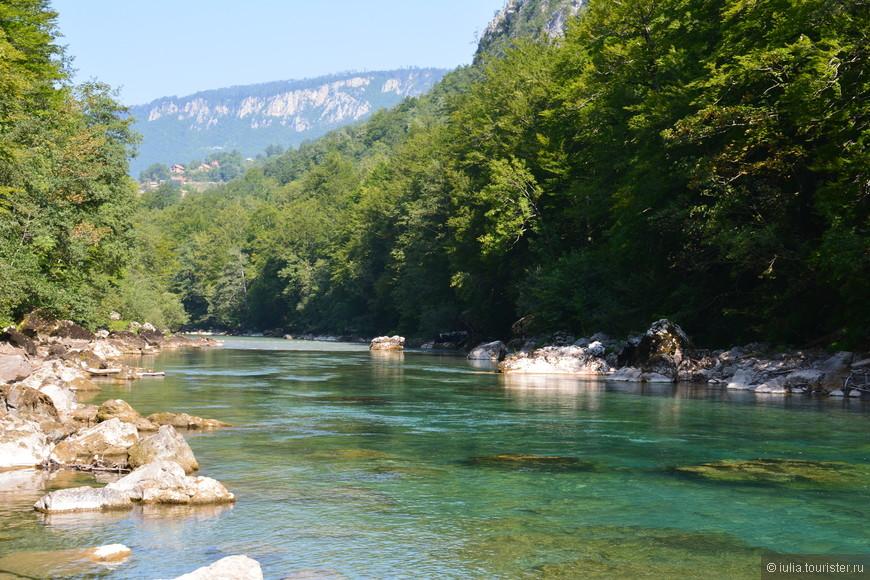 Кристальная чистота воды позволяет видеть дно реки, покрытое галькой, лишенное любой водной растительности в виде водорослей. Каньон реки Тара, входящий в состав Национального парка Дурмитор, в 1980 году был занесен в Мировой список наследия ЮНЕСКО.