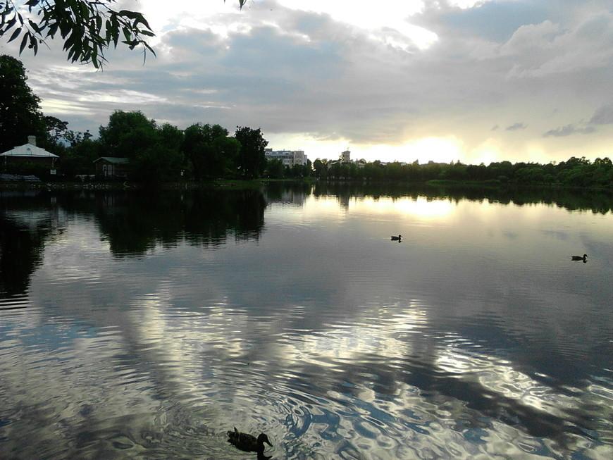 Ольгин пруд  вечером