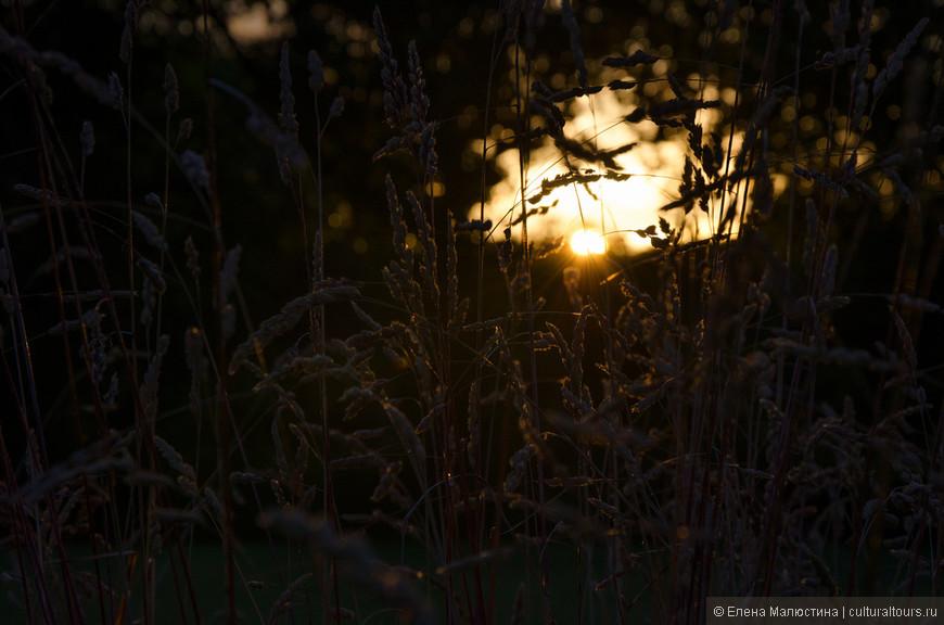 Последние лучики заходящего солнца