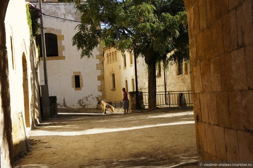 Только себя сфотографировал, как увидел местного жителя с собакой. Он как незаметно появился, так и незаметно исчез. Мне даже показалось, что не он выгуливал собаку, а она его и сделала она это достаточно быстро.