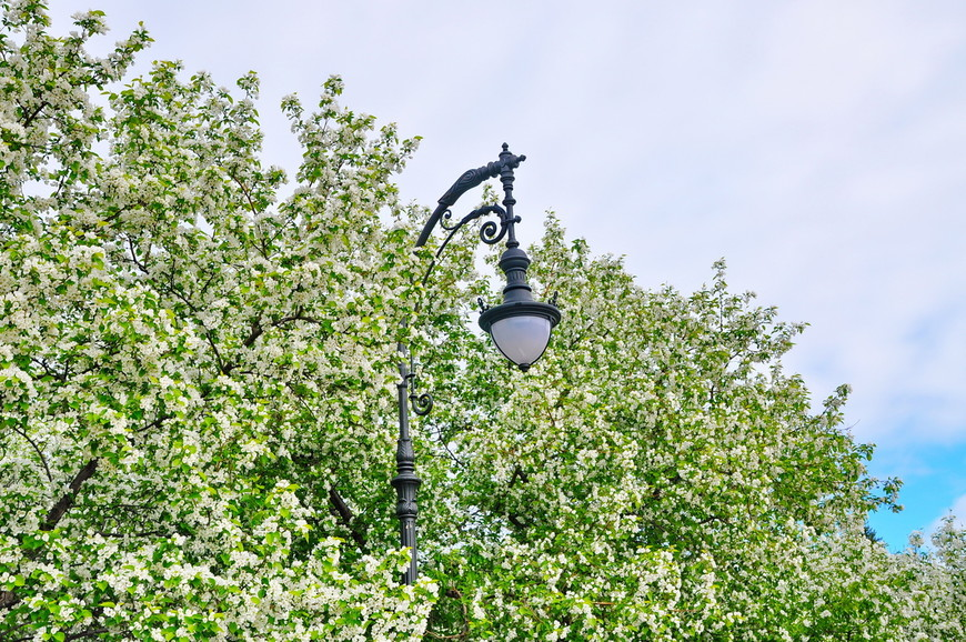 11. Шикарные фонарные столбы. Такие же установлены на территории храма, может это РПЦ отреставрировала парк.