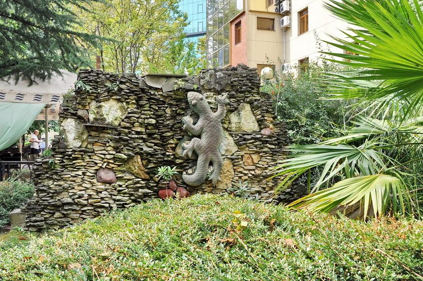 15. Ящерка с гигантским хвостом в парке. Сочи богатый на детали город.